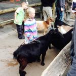 アメリカ観光日記:オハイオ州のシンシナティ動物園